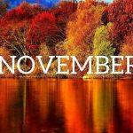 11月度 ♪各種レクチャー開講スケジュール♪