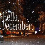 12月度 ♪各種レクチャー開講スケジュール♪